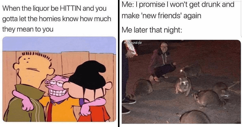 Funny memes about drinking | liquor be HITTIN and gotta let homies know much they mean ed edd n' eddy | promise won't get drunk and make 'new friends' again later night: 203moskyle person feeding raccoons
