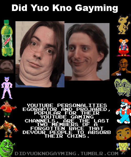 youtube,egoraptor,did yuo kno gayming,projared