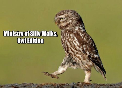 Ministry of Silly Walks, Owl Edition