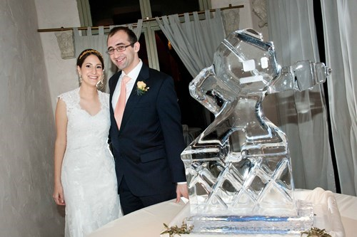 ice,mega man,wedding