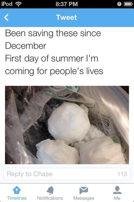 snow snowballs twitter - 8241560320