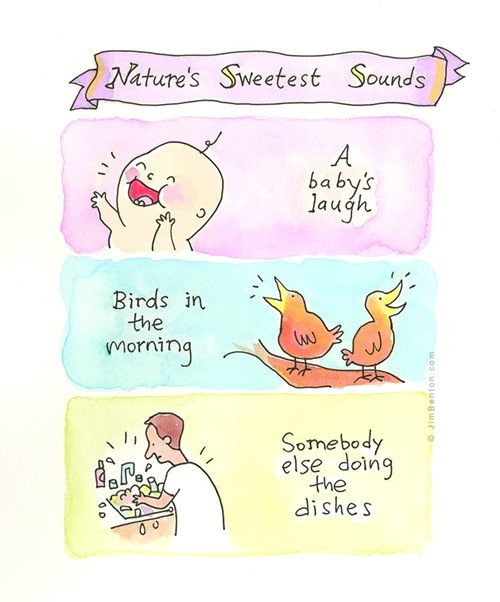 Babies,birds,dishes,web comics,the indifference of nature