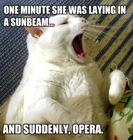 ONE MINUTE SHE WAS LAYING IN A SUNBEAM... AND SUDDENLY, OPERA.