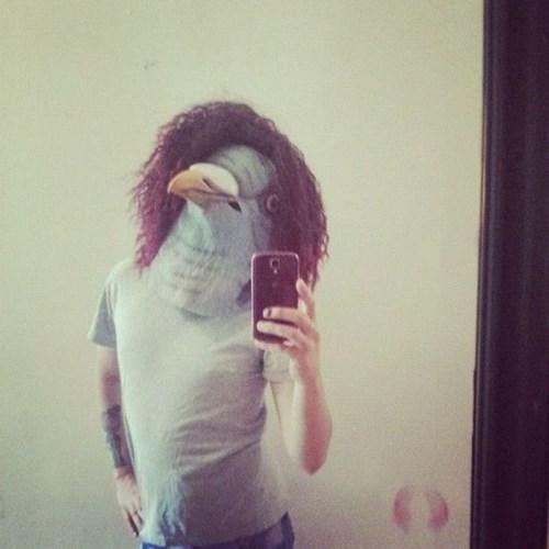 mask pigeon poorly dressed selfie pigeon mask - 8241654528