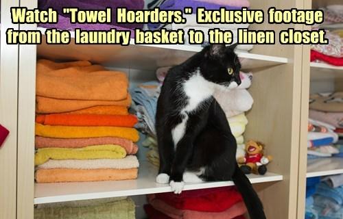 Cats laundry - 8242088448