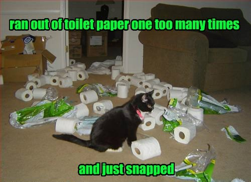 ran out of toilet paper one too many times and just snapped