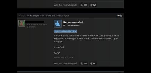 car,turtle,steam reviews