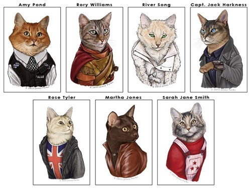 Cats doctor who companions - 8242857472