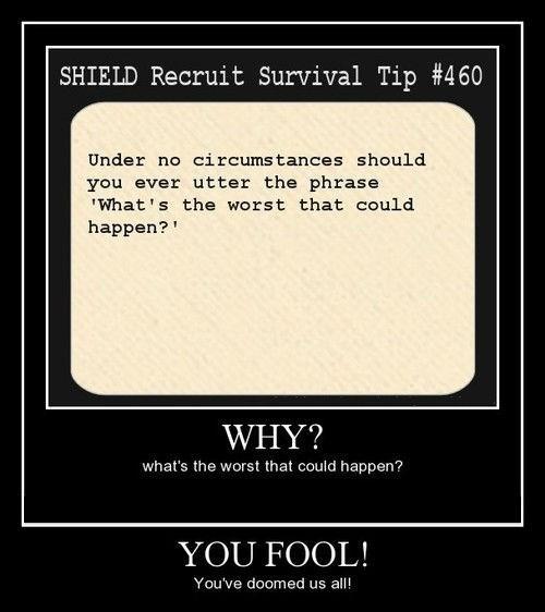bad idea fool idiots funny - 8243068672