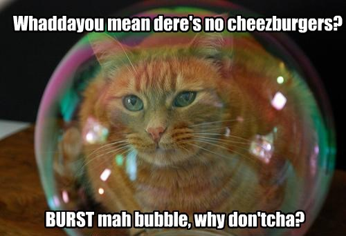 Whaddayou mean dere's no cheezburgers? BURST mah bubble, why don'tcha?
