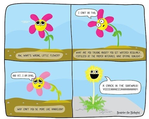 flowers,nature,science,web comics,the indifference of nature