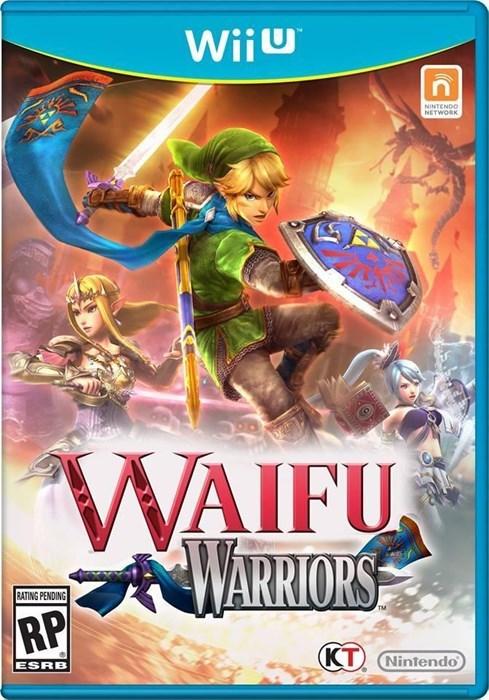 nintendo waifu wii U hyrule warriors - 8243923456