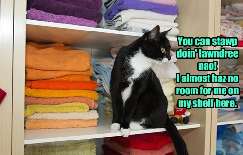laundry cute Cats - 8243984128