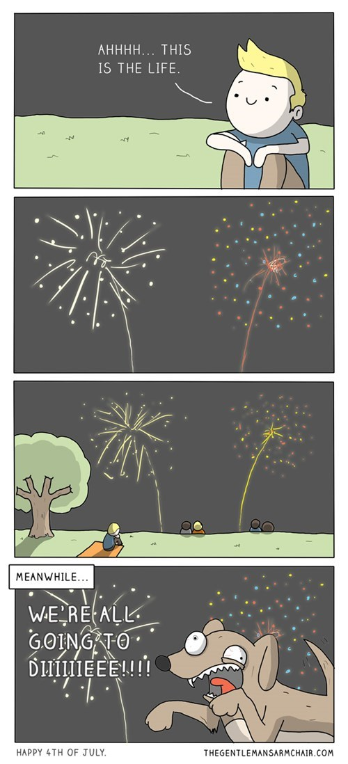 fourth of july dogs fireworks web comics - 8244025856