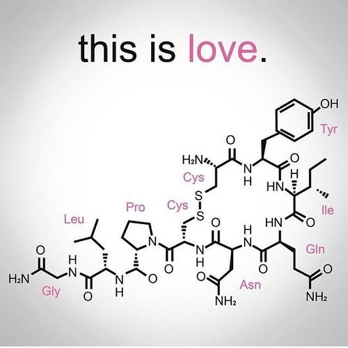 awesome love science Chemistry funny dating g rated - 8244480256