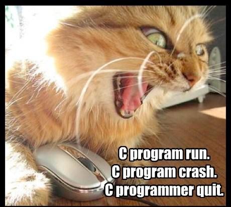C program run. C program crash. C programmer quit.