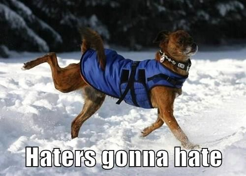 dogs,Deal With It,funny,prance