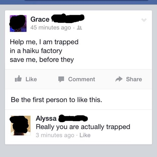 facepalm,haiku,poetry,failbook,g rated