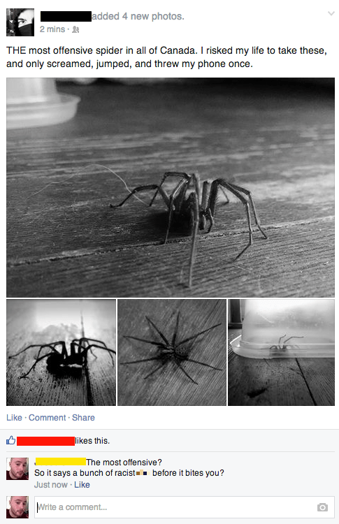 Kill It With Fire spiders thats-racist - 8246451712