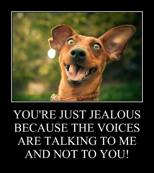 crazy dogs funny voices - 8246641152