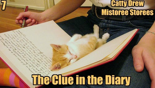 Catty Drew Mistoree Storees 7 The Clue in the Diary