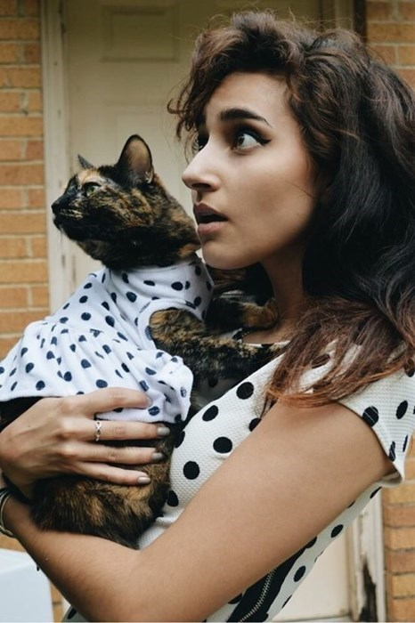 Cats matching polka dots poorly dressed - 8247790592