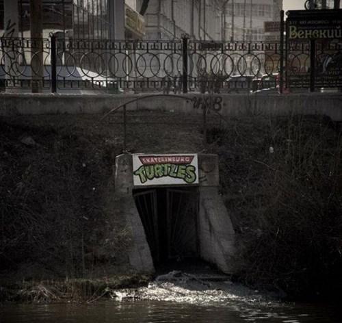IRL,sewer,TMNT