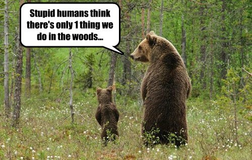 Stupid humans think there's only 1 thing we do in the woods...