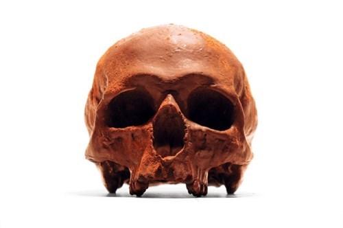 food chocolate design skull - 8248878080