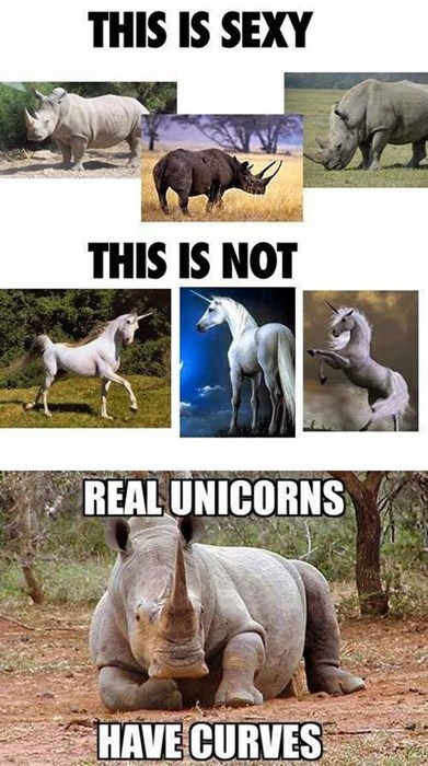 beauty curves funny rhinos unicorn - 8249044992