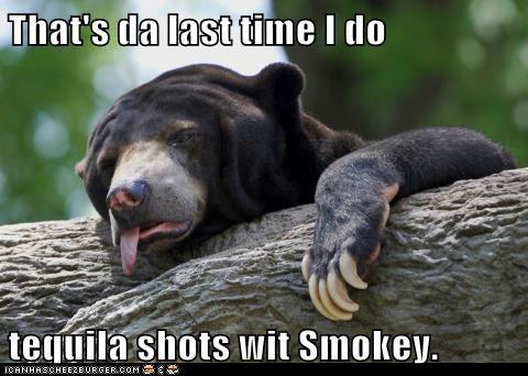 bears,taquila