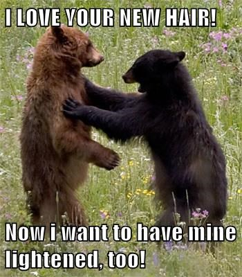 cute,bears,hair