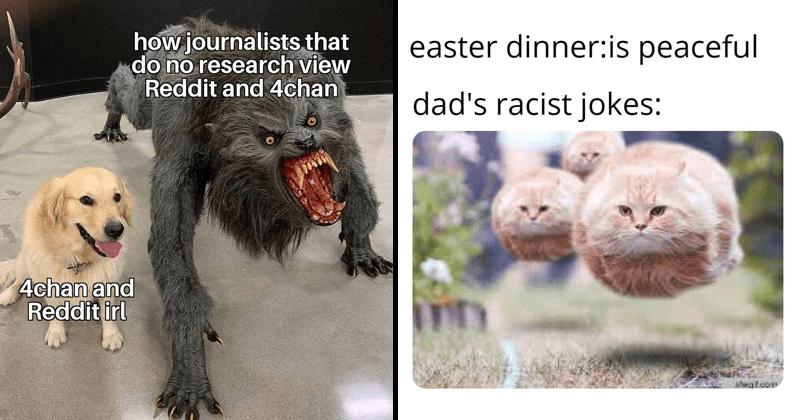 dank memes, edgy memes, offensive memes.