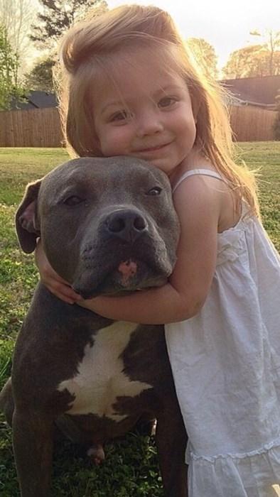 cute dogs kids love - 8251093248