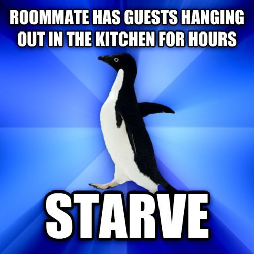 socially awkward penguin,shyness,roommates