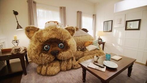 furniture design Cats - 8251359488