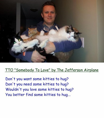 """Don't you want some kitties to hug? Don't you need some kitties to hug? Wouldn't you love some kitties to hug? You better find some kitties to hug... TTO """"Somebody To Love"""" by The Jefferson Airplane"""
