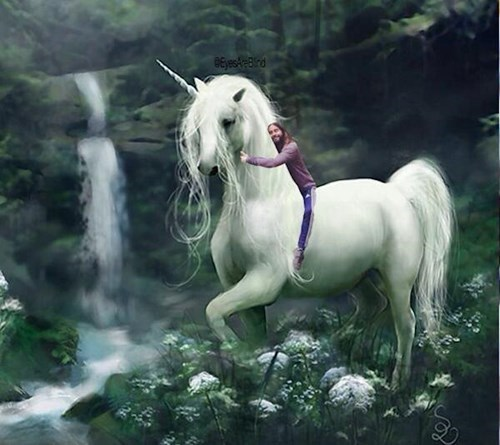 Unicorn - GEyest-Brd