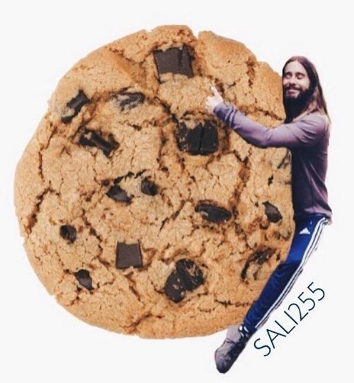 Cookies and crackers - SALI255