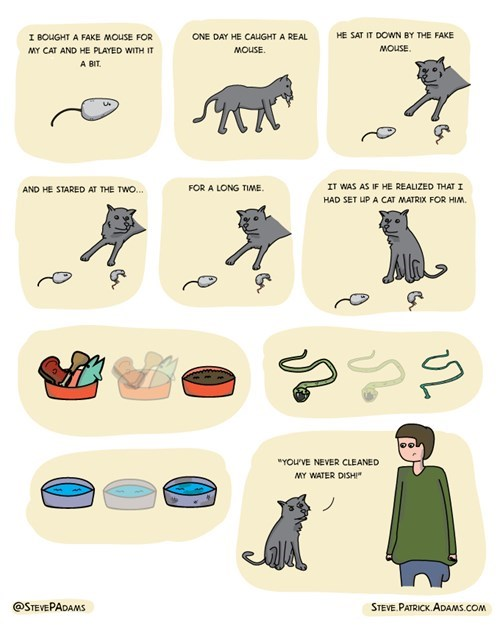 Cats the matrix web comics - 8252376576