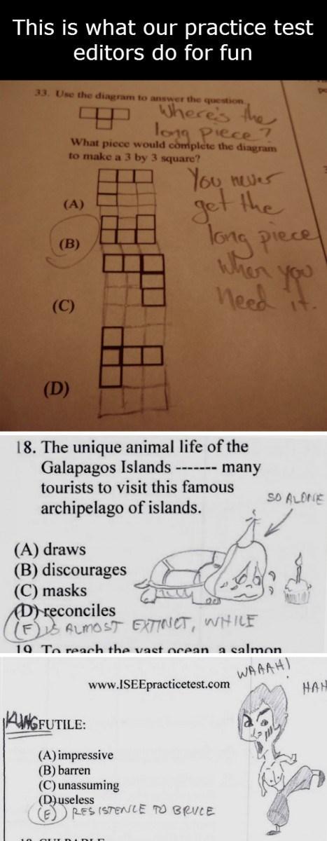 doodle school test - 8253103360