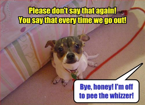 wizard of oz dogs puns - 8253598464