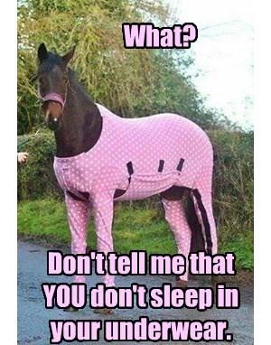 horses underwear pink - 8253952768