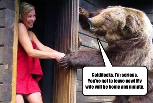 bears,sexy times,funny,goldilocks