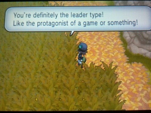 gameplay,fourth wall,Pokémon
