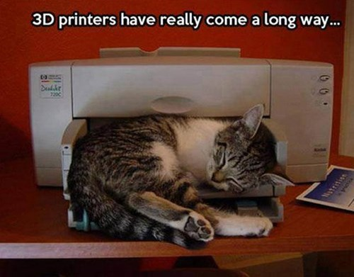 Cats,3D printing