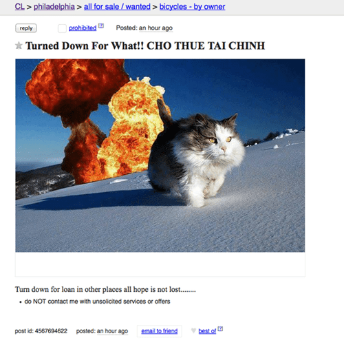 craigslist,for sale