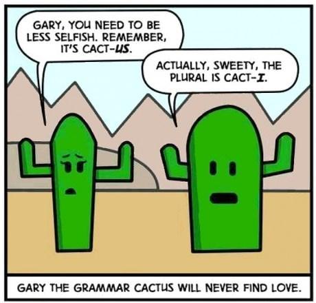 grammar cactus web comics - 8256314368