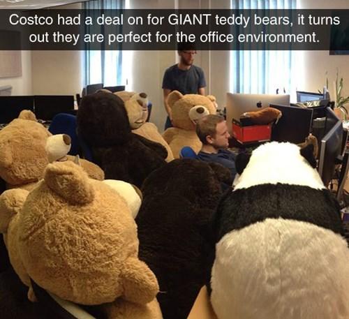teddy bears - 8256350464