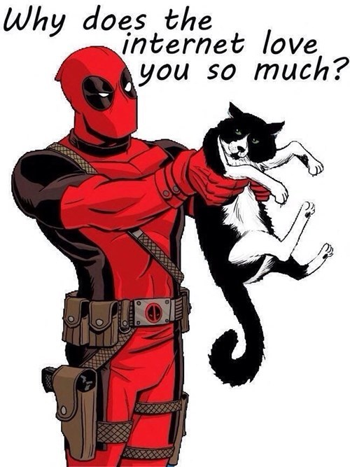 the internets deadpool Cats - 8256372480
